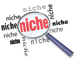 What is Your Niche Marketing Strategy?